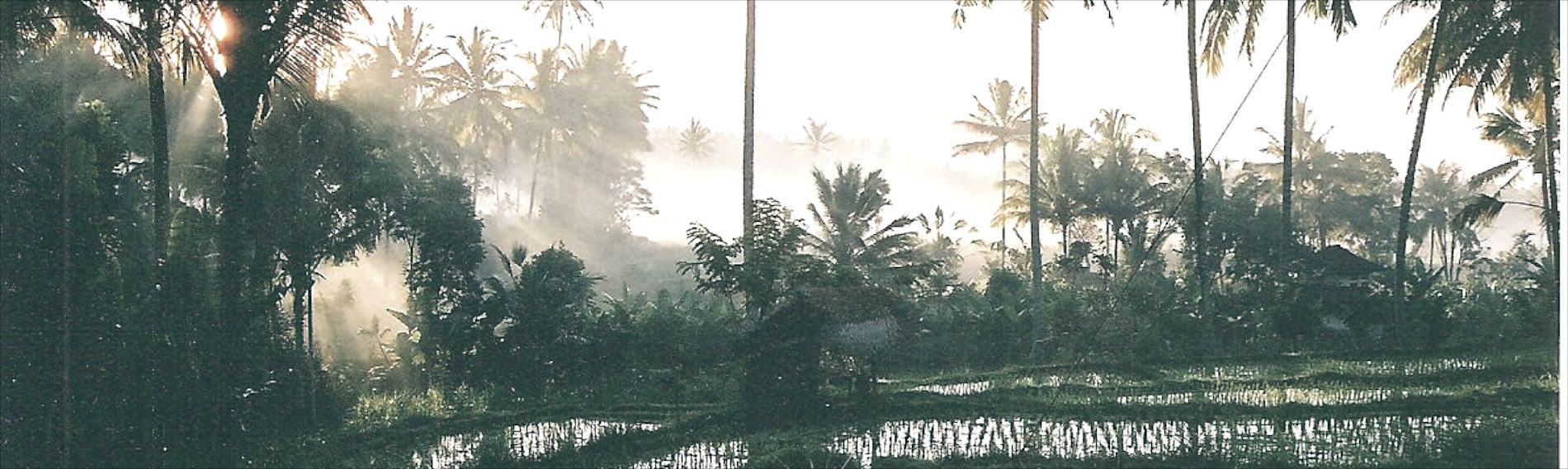 https://mlcb8szwyxfv.i.optimole.com/tTCGqh8-k0N3EP3c/w:auto/h:auto/q:90/https://www.uniqueteambuilding.com.au/wp-content/uploads/2014/10/Bali-retreat-rot-3.jpg